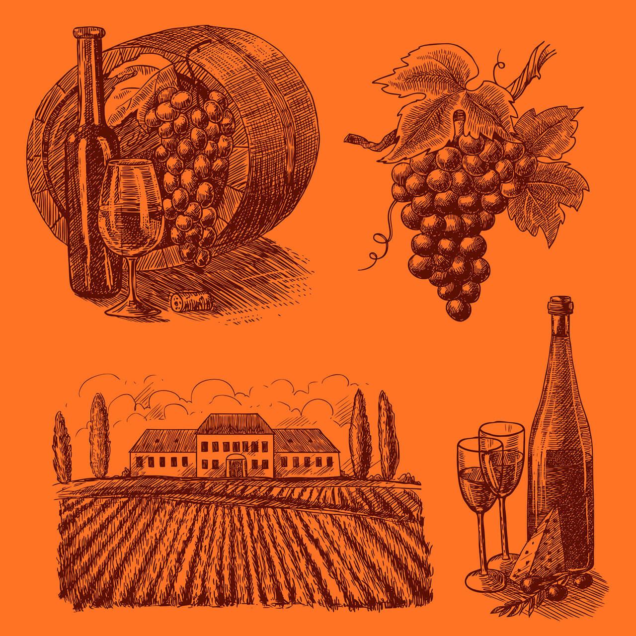 赤でもない白でもないオレンジワインの世界
